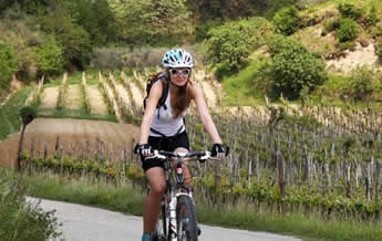 Croatia Holidays Specials | Cycling Tour of Istria